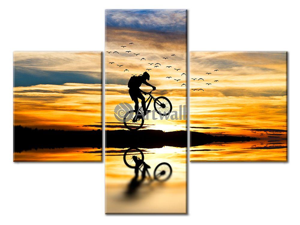 Модульная картина «Горный велосипед»