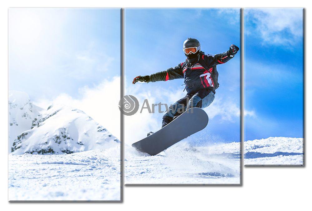 Модульная картина «Сноубордист»